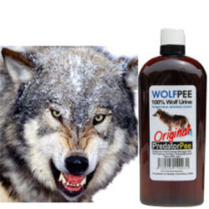 うるふぴーえきたい|どうぶつ|きひざい|鹿(シカ)、熊(クマ)、猪(イノシシ)、猿(サル)など、多くの哺乳類の天敵である狼(オオカミ)の尿100%の動物避けオオカミの尿100%の動物忌避剤ウルフピーの通信販売:テクネットストア製品名:ウルフピー 有効成分:オオカミ尿  内容量:1本(340ml)剤型:液状 販売元:有限会社エイアイ企画 対象害獣:猿(サル)、鹿(シカ)、猪(イノシシ)など対象場所:畑、水田、高速道路などアメリカ国内においては、20年以上の国立公園や農園などでの使用実績があります!そして、平成22年にJAS有機適合資材として認められました! 猿鹿猪など獣害対策の新しい切り札!天敵オオカミが動物を寄せ付けない!ウルフピーオオカミの尿100%の動物忌避剤ウルフピーとは?シカ、クマ、イノシシ、サルなど多くの哺乳類の天敵である狼の尿100%の動物避けです。天敵に対する忌避行動を利用した商品ですのでニオイに慣れにくいのが特徴です。オオカミの尿100%の動物忌避剤ウルフピーは小分け容器に入れて作物や道路の周囲にぶらさげるだけなのでほとんどの人に簡単、初期、維持費用が安く導入できます。狼の尿だけを使用し添加物などを一切使用していない動物、自然に優しい天然の動物プロテクションです。オオカミの尿100%の動物忌避剤ウルフピーはこれまでと全く違う新しい「動物よけ」です。サル、イノシシ、シカなど獣害をもたらす動物に対する既存の電気柵、ネット、入口忌避剤等は設置に費用と手間がかかる、動物が慣れてしまい効果がなくなる等の問題点がありましたがオオカミの尿100%の動物忌避剤ウルフピーは小分け容器に入れて作物の周囲にぶらさげるだけなのでこれまでにない高い効果と簡単・安価な設置・維持ができます。オオカミの尿100%の動物忌避剤ウルフピーは高齢の方や女性にも設置が簡単!オオカミの尿100%の動物忌避剤ウルフピーは液体が乾燥したら注ぎ足すだけなのでい日が容易です。オオカミの尿100%の動物忌避剤ウルフピーは1か所あたりわずかな量で高い効果を発揮するため優れた費用対策効果が期待できます。写真、長野県りんご園で設置中のオオカミの尿100%の動物忌避剤ウルフピー。小分け容器に入れて既存の柵にひっかけて使っています。自然を汚染したり動物を傷つけたりすることなく効果的に動物被害対策ができます。もちろん環境を損なうことなく人に安全にお取り扱い頂けます。天然狼尿100%なので臭いに慣れやすい猿は「天敵に対する学習効果」が高いため特に高い効果が実証されています。オオカミの尿100%の動物忌避剤ウルフピーは設置・維持が簡単!オオカミの尿100%の動物忌避剤ウルフピーは導入コスト・維持費が安い!オオカミの尿100%の動物忌避剤ウルフピーは動物が臭いに慣れにくい。オオカミの尿100%の動物忌避剤ウルフピーは米国内において20年以上国立公園や農園等での使用実績あり。オオカミの尿100%の動物忌避剤ウルフピーは動物が作物そのものに近づかなる。オオカミの尿100%の動物忌避剤ウルフピーは人動物自然に安全。オオカミの尿100%の動物忌避剤ウルフピーは小分け用意に入れてウルフピーを動物から保護したい場所を囲むように設置、または獣道をブロックするように設置します。オオカミの尿100%の動物忌避剤ウルフピーの使い方、イノシシ、サル、シカ、クマなどの大型動物は約6mごとに設置。タヌキ、キツネ、ハクビシンなどの小型動物は約4mごとに設置。動物の特に侵入しやすい箇所に間隔を狭くすることより効果的です。小分け容器(約30〜50ml程度)に充填した場合、約一か月で蒸発するので蒸発したら適宜注ぎ足すことによって引き続きご使用頂けます。オオカミの尿100%の動物忌避剤ウルフピーは雨などで薄まると効果も薄まりますので薄くなった場合は廃棄して新しいウルフピーを注ぎ足して下さい。オオカミの尿100%の動物忌避剤ウルフピーは設置・維持・撤収が簡単なので被害の多発する収穫前だけの設置でも簡単にご利用いただけます。オオカミの尿100%の動物忌避剤ウルフピーの設置例、レタス鹿、水稲猪猿、高速道路猿鹿、鹿(シカ)、熊(クマ)、猪(イノシシ)、猿(サル)など、多くの哺乳類の天敵である狼(オオカミ)の尿100%の動物避けオオカミの尿100%の動物忌避剤ウルフピーの通信販売:テクネットストア